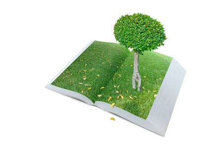 open pop up book with real tree and green grass field theme isolated on white, 3d