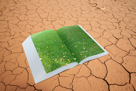 alter: open pop up book with real green grass field on dry cracked land, 3d style