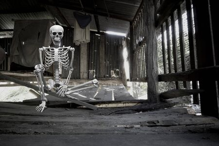 Fake human skeleton sitting in the old abandoned wooden hut, halloween concept.