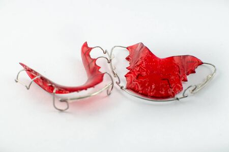 This is a model denture for dentist heal people photo