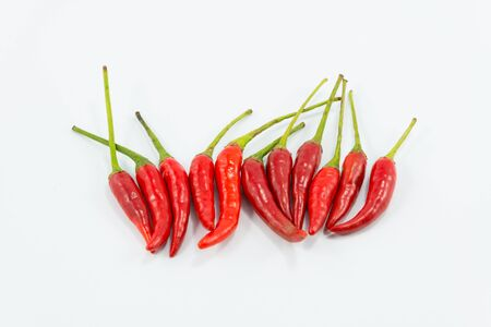Chilli on white backgrounds. photo