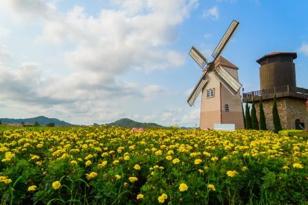Wind Turbine at chonburi province (Thailand.) photo