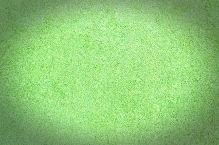 green grass texture photo