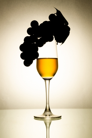 Wine glass (Process special style) photo