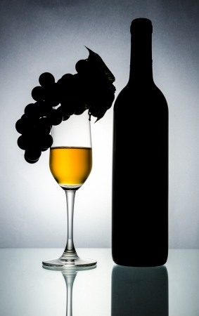 Bottle&wine glass (Process special style) photo
