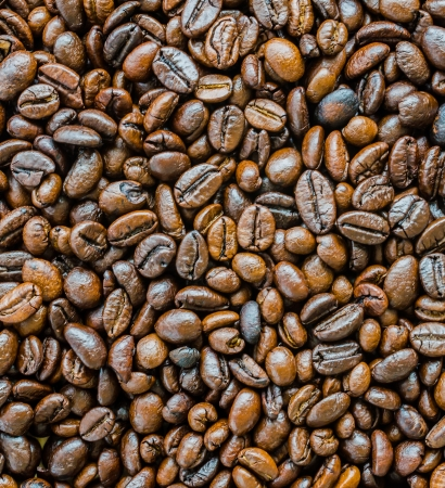 robusta: Closeup coffee beans for background&texture