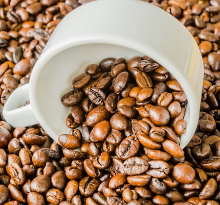 Coffee beans on white cup