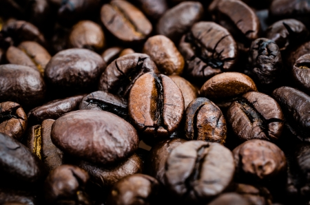 robusta: Coffe beans texture (Special process style)