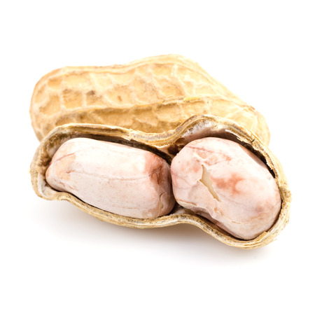 Peanut on white background photo