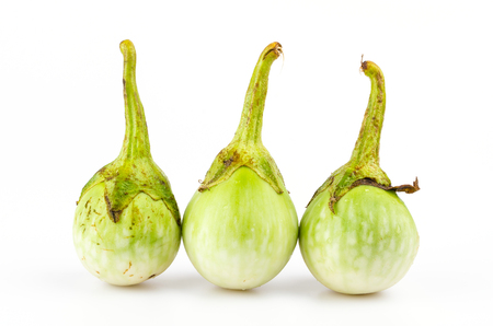 Eggplant on isolated white background photo