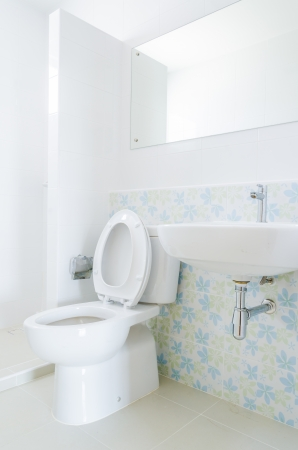 Toilet Stock Photo - 24621964