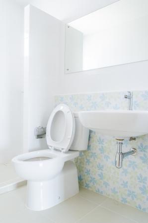 Toilet Stock Photo - 24621964