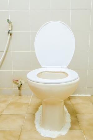 Toilet Stock Photo - 24673644