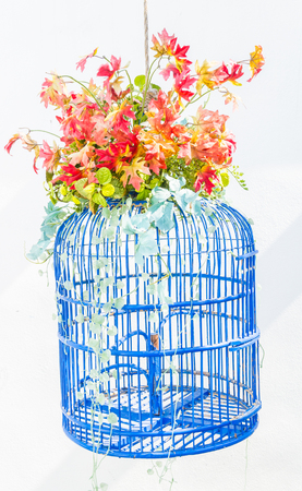 bird cage flower photo