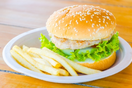 Hamburger and french fries , fast food photo