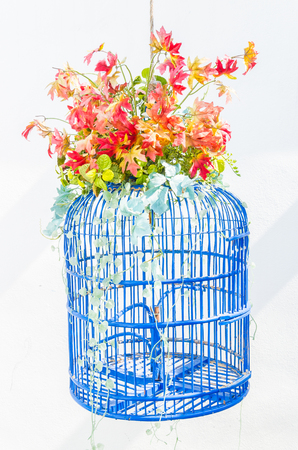 bird cage with flowers photo