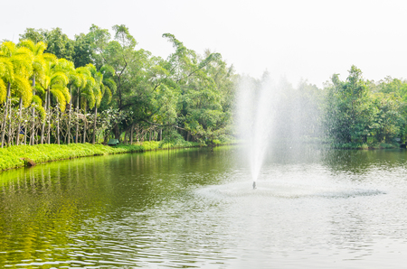 Fountain park in the city photo