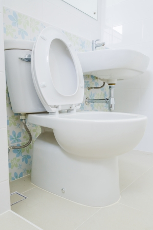 Toilet Stock Photo - 25520644
