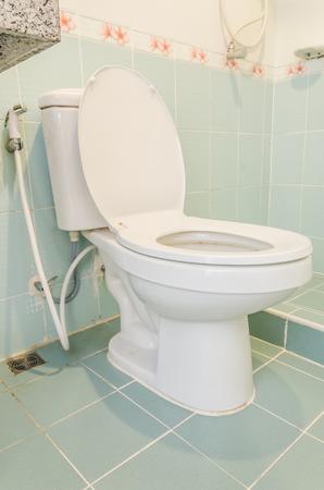 toilet seat: Toilet seat