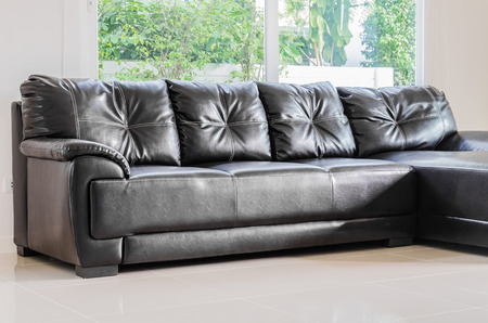 Interior room with black sofa in living room area photo