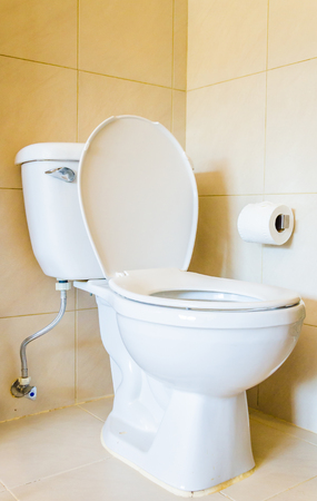 Toilet Stock Photo - 27191605