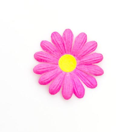 Isolated flowers photo
