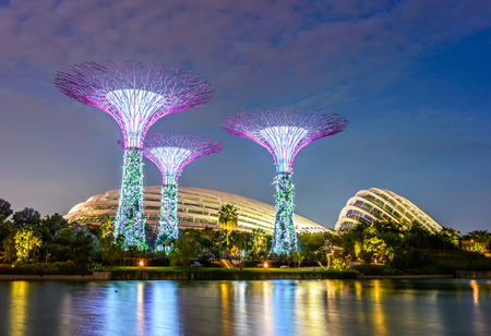 SINGAPORE - JUNE 26: Night view of Supertree Grove at Gardens by the Bay on JUNE 26, 2014 in Singapore. Spanning 101 hectares of reclaimed land in central Singapore, adjacent to the Marina Reservoir. Stock Photo - 30037902