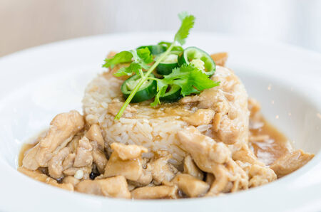 Chicken with brown sauce on rice photo