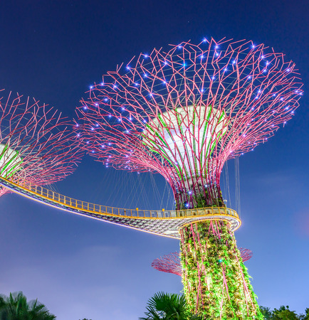 SINGAPORE - JUNE 26: Night view of Supertree Grove at Gardens by the Bay on JUNE 26, 2014 in Singapore. Spanning 101 hectares of reclaimed land in central Singapore, adjacent to the Marina Reservoir.