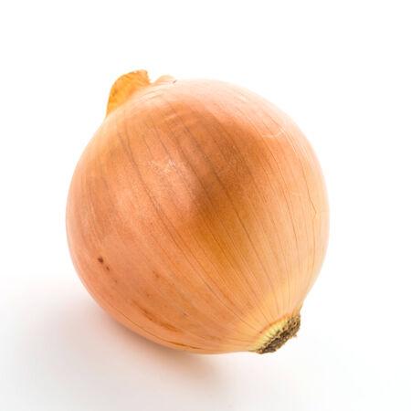 onion isolated: Cebolla aisladas sobre fondo blanco