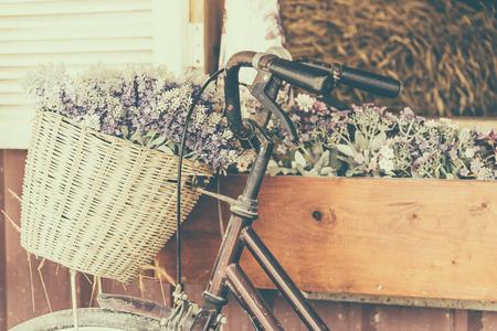 évjárat: Veterán kerékpár virággal - vintage hatású szűrő stílusú képek Stock fotó