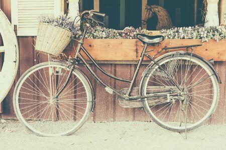 bicicleta: Bicicleta de la vendimia con la flor - efecto de filtro de estilo imágenes del vintage