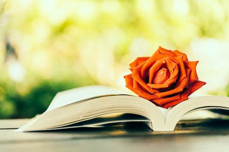 -ビンテージ効果のスタイルの写真の本のバラ