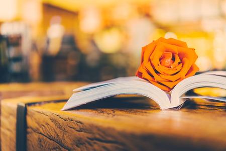 Rose en el libro - imágenes de estilo efecto de la vendimia Foto de archivo