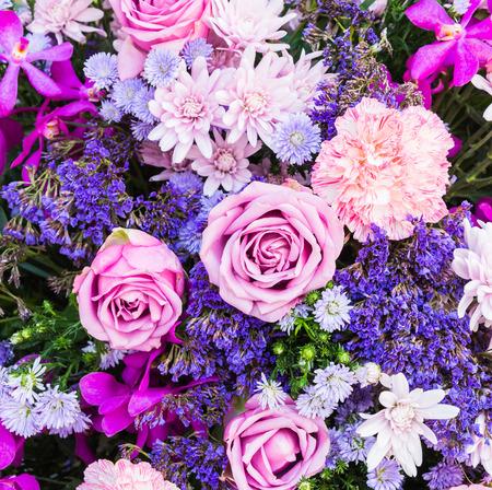 jardines con flores: Naturaleza colorida flor fondos Foto de archivo