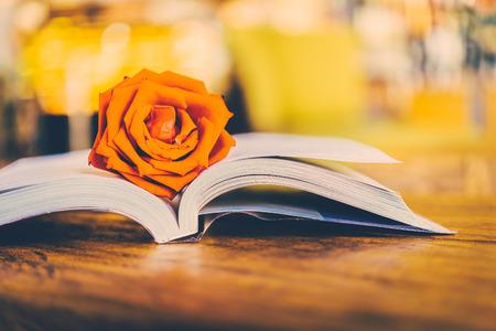Rose en el libro - imágenes de estilo efecto de la vendimia