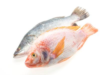 Raw fresh fish isolated on white background photo