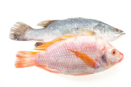 nile tilapia: Raw fresh fish isolated on white background