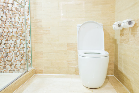 Toilet Stock Photo - 43735839