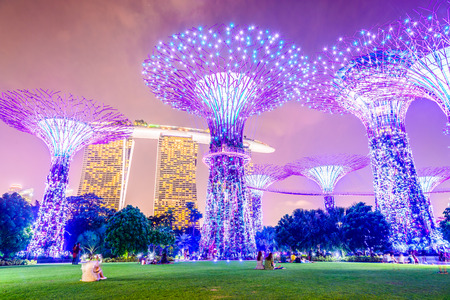 garden city: Supertree grove at garden by the bay in singapore Editorial