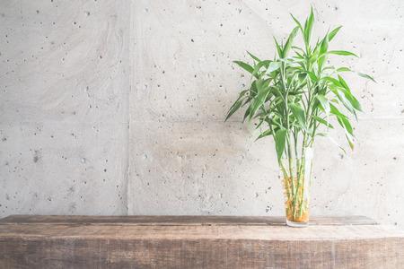clean office: Vase plant decoration with empty room - vintage haze filter