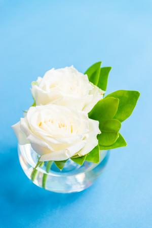 glass vase: White roses in glass vase