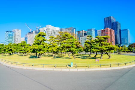 imperial: Beautiful Imperial palace building in tokyo japan