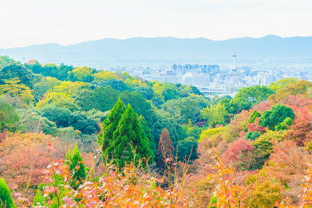 Beautiful Architecture in Kiyomizu temple at Kyoto Japan