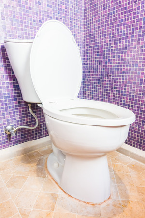 Toilet seat in toilet room interior