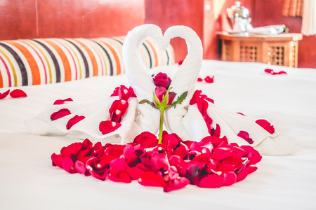 honeymoon suite: Swan towel and Rose flower decoration on bedroom interior with morocco style - vintage filter