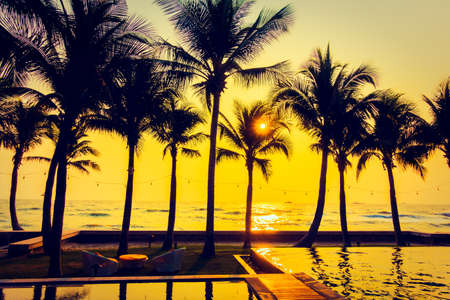 tropical beach: Silhouette palm tree on the beach and sea around beautiful luxury swimming pool in sunset - Vintage Filter and Boost up color Processing Editorial