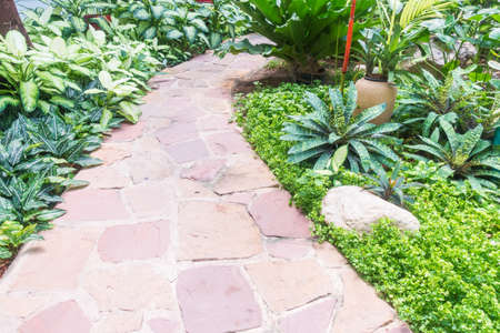 stone path: Stone path way for walk in the beautiful garden