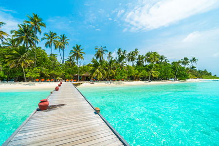 Maldivas isla tropical hermosa con la playa, el mar, y la palmera de coco en el cielo azul por la naturaleza temporal de fondo concepto de vacaciones -Boost el procesamiento de color