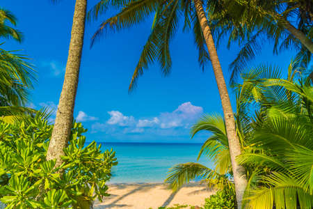 Beautiful tropical beach and sea with coconut palm tree in paradise island - Holiday Vacation concept